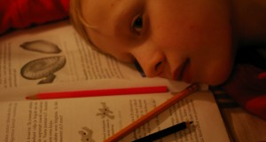 Učenje za vrijeme spavanja ili hipnopedija