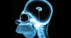 """Psihomoljac: """"Plitko: Što Internet čini Vašem mozgu"""""""