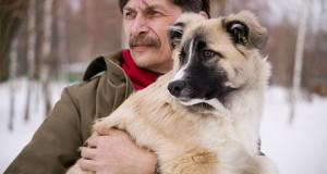 Pas kao konstantni monitor šećera u krvi