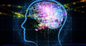 "Psihomoljac: ""Louann Brizendine – Muški mozak"""